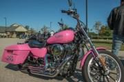 004-Rosie-Rider-2019