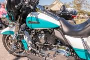 022-Rosie-Rider-2019