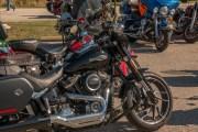 036-Rosie-Rider-2019