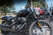142-Rosie-Rider-2019