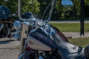 143-Rosie-Rider-2019