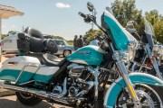 163-Rosie-Rider-2019