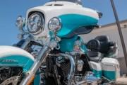 165-Rosie-Rider-2019