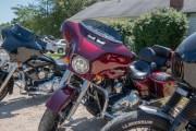 170-Rosie-Rider-2019