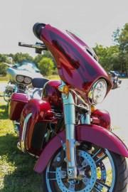 178-Rosie-Rider-2019