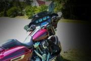 179-Rosie-Rider-2019